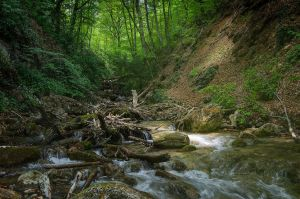 Crimea... _28_ by my-shots