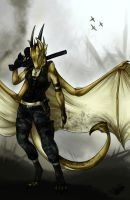 The War Dragoness by Natoli