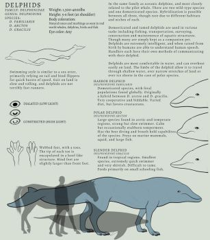Delphid Species Reference by Kydnt