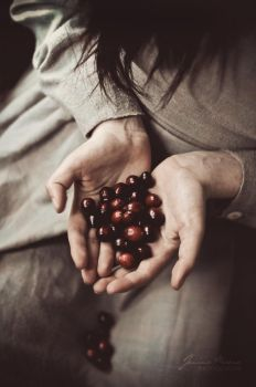 cranberries by Catliv