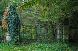 Old iron gate STOCK by ChristinaIsabella