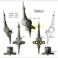 Tameit EVE Online Contest by rawis007