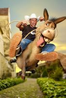 Eddie and Donkey by salis2006