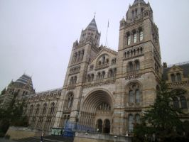 Natural History Museum 1 by icediamond7