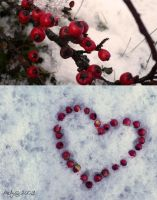 Winter Love by T-Nelly