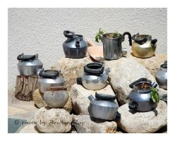 sprouting teapots by tachsheet-Jeulian