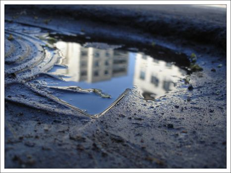 puddle. by callur