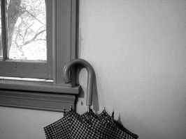 Window by bw-photography