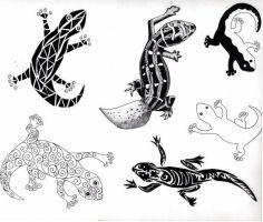 Geckos by eugeal