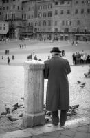 Pigeon Man 5772649 by StockProject1