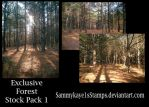Exclusive Forest Stock Pack 1 by Sammykaye1sStamps