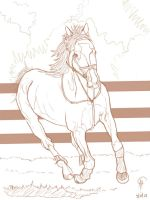Horse sketch by Poyopeep