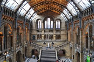 British Natural History Museum by alpi