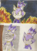 Blaze the Cat by Blaze-5