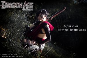 Morrigan, The witch of the wilds by IssssE