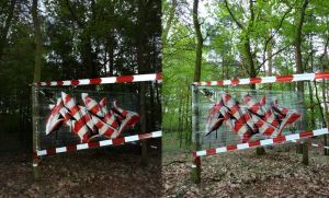 Action Line  (spoare153, Frankfurt(oder), 2013 by spoare153