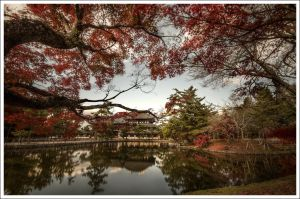Temple's Todai-ji Nara by Graphylight