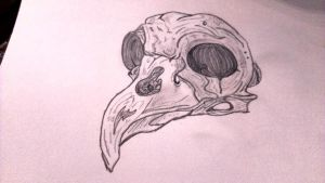 owl skull by Inthemindofsarah