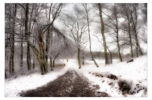 White by AndersStangl