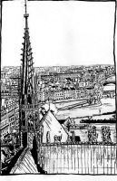 The roofs of Notre Dame by crisurdiales