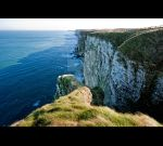 Bempton Cliffs by Aden-Photo