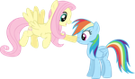 Fluttershy and Rainbow Dash by vectorvector