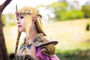 Queen Zelda from Hyrule Warriors by LayzeMichelle