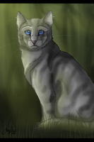 Jayfeather of ThunderClan by TheMoonfall