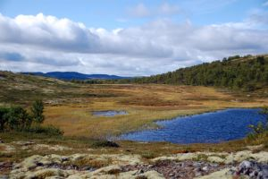 Norway landscape stock 3 by GrayeyesStock