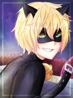 Chat Noir Miraculous by Sapphire240400