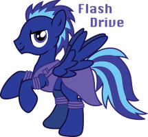 FlashDrive: A Commission for Ukir4321 by InkRose98