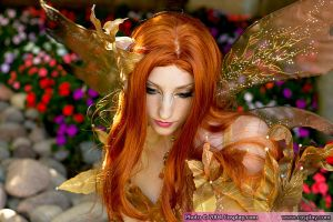 Lillyxandra - Fairy Costume by kjphoto