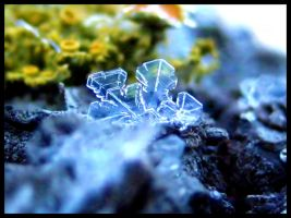 Crystalline by FramedByNature