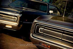 Three Hundreds by AmericanMuscle