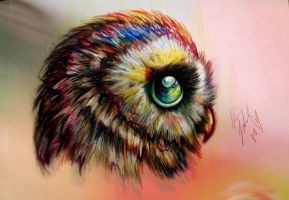 Owly by ClairesDrawings