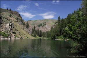 Lime Creek Summer View by melly4260