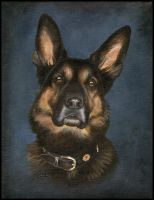 German shepherd by chipset