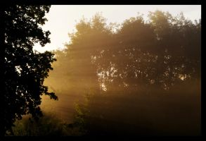 A Late September Morning by ThoughtMemory