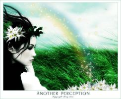 Another Perception by spiritsighs