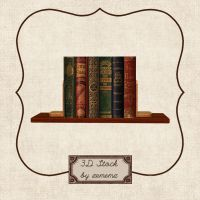 3D Books On A Shelf by zememz
