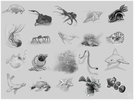 Draw 20... Creatures of Sea by JanaW
