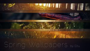 Spring Wallpapers Preview by ivarhill