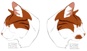 Raypaw Profiles by Lithestep
