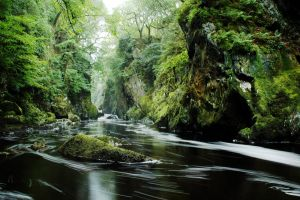 fairy glen2 by zaphod66