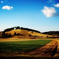 golden hill by maticgolob