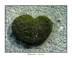 Green love by lexidh