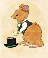 The Dormouse by Exoe