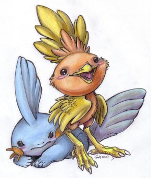 Torchic and Mudkip by guardianofire