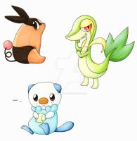 Pokemon: 5th Gen Starters by BrokenPuppet