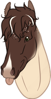Commission: Snjorrir Foal #197 for SWC-arpg by sazzy-riza